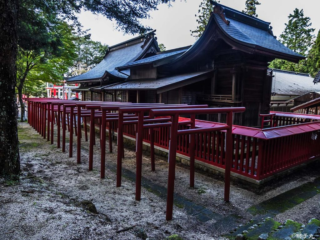 荷機稲荷神社 本殿側面