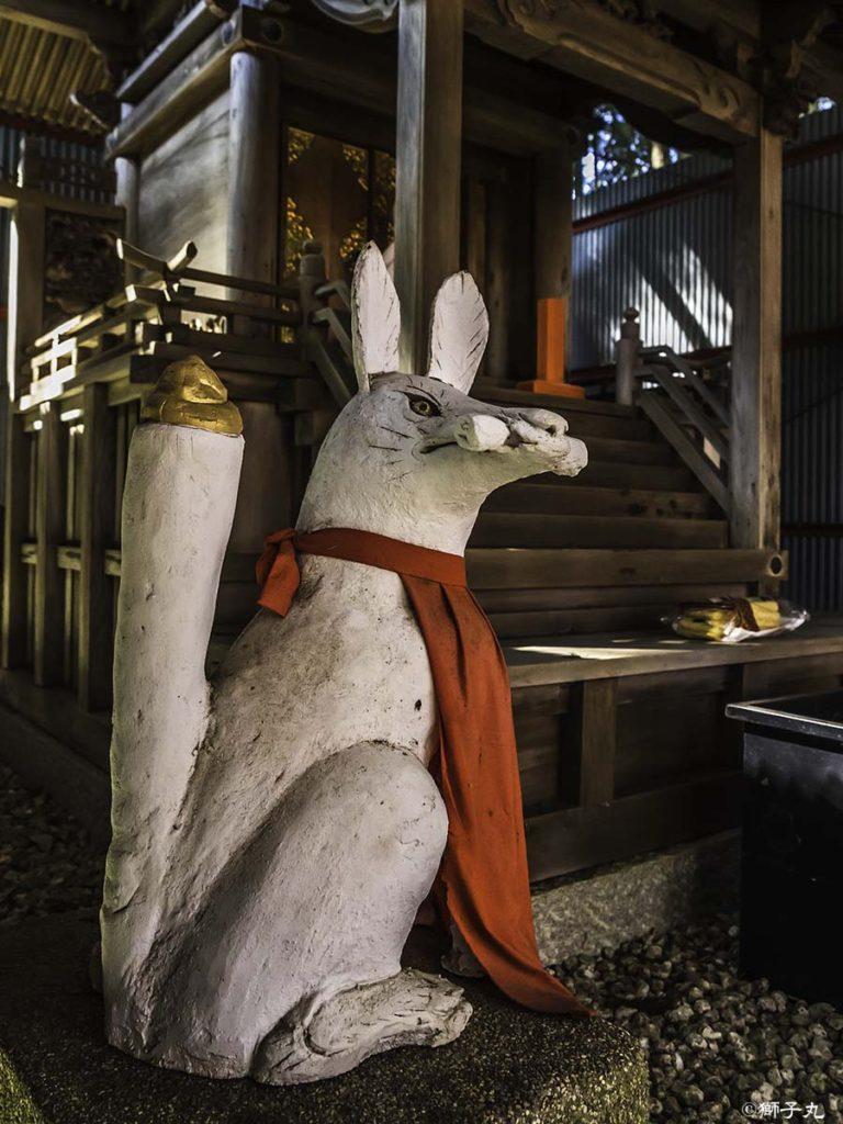 中山稲荷神社(岐阜県中津川市) 拝殿内狛狐