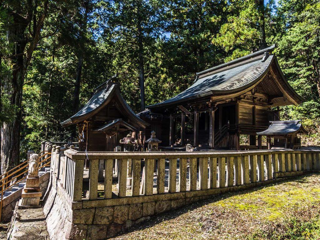 坂本神社八幡宮 本殿を側面から望む