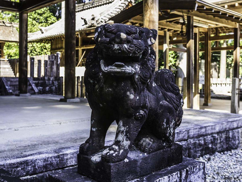 坂下神社 狛犬(阿形)