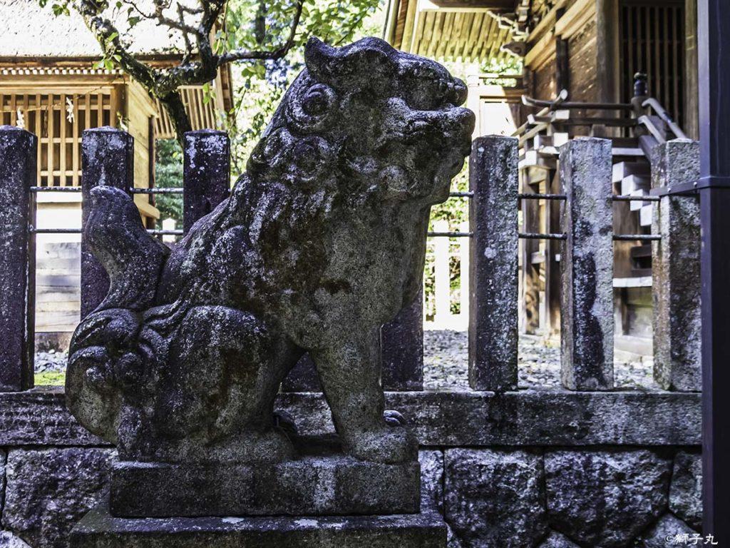 坂下神社 拝殿内 狛犬(吽形)