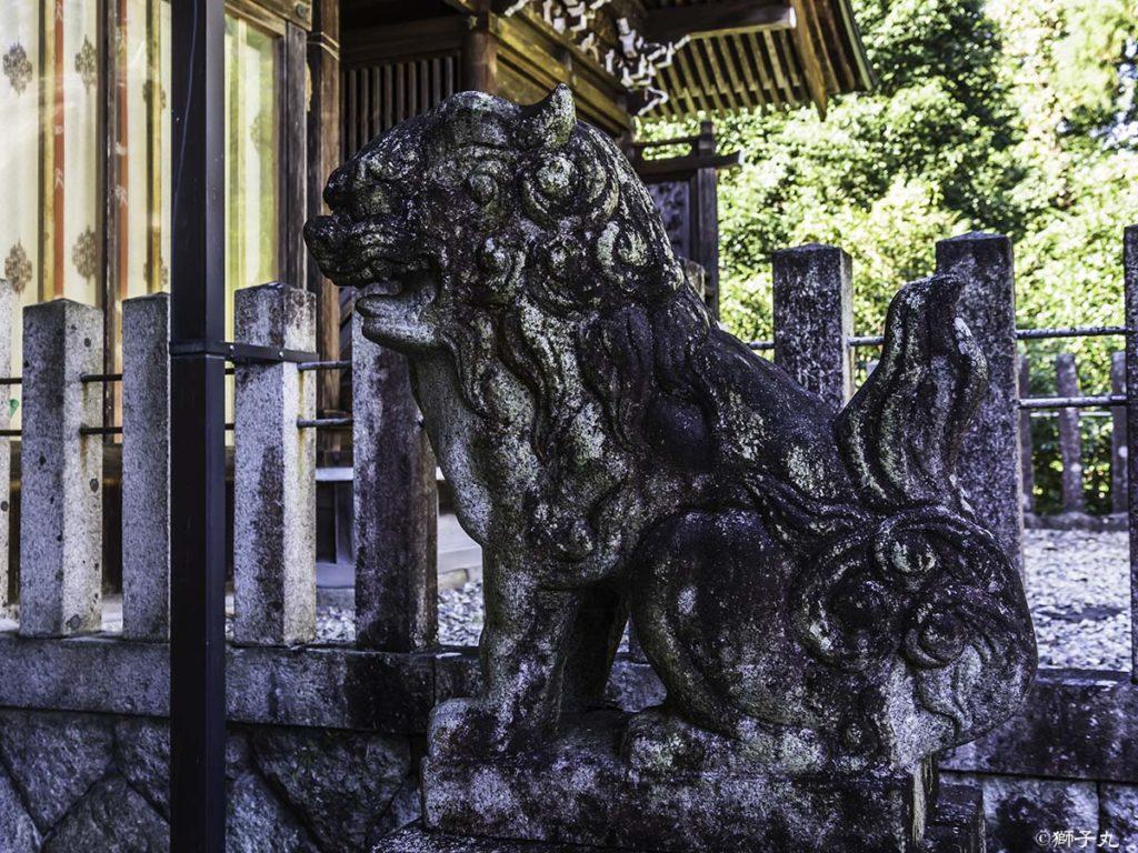 坂下神社 拝殿内 狛犬(阿形)