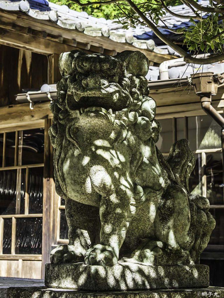坂下神社 坂下護国神社 狛犬(阿形)