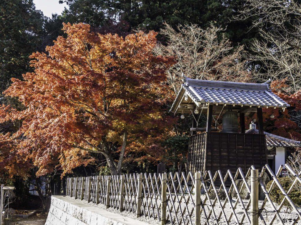 大明山 龍護寺 鐘楼と紅葉