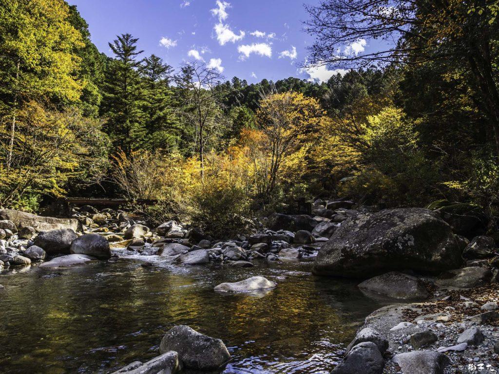夕森公園 川と紅葉