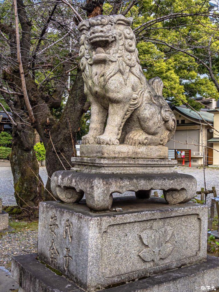 若宮八幡社(名古屋市中区) 南中央狛犬(阿形)