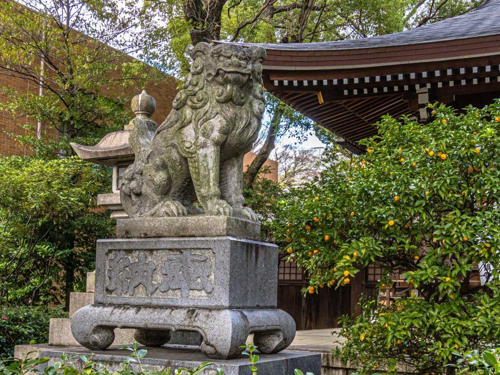 若宮八幡社(名古屋市中区) 拝殿前狛犬(吽形)