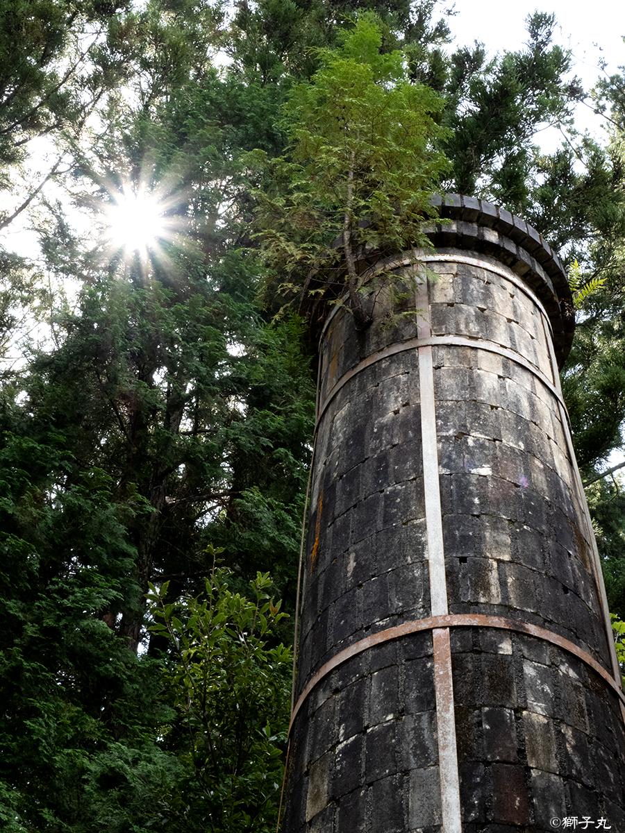 世界一の茶つぼ「豊穣の壺」 煙突上部の木と光芒
